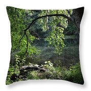 Still Water Throw Pillow