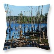 Still Wood - Manasquan Reservoir Throw Pillow