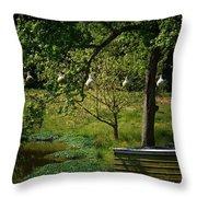 Stillness Of Spring Throw Pillow