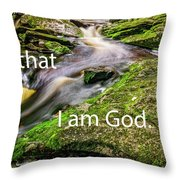 Stillness Speaks Throw Pillow
