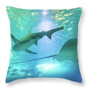 Sting Ray And Shark Throw Pillow