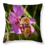 Sting Throw Pillow