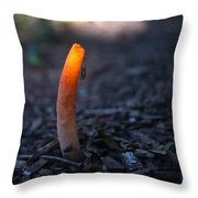Stinkhorn Fungus With Fly Feeding Throw Pillow