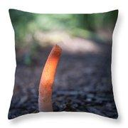 Stinkhorn In Sunlight Beam Throw Pillow