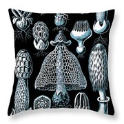 Stinkhorn Mushrooms Vintage Illustration Throw Pillow