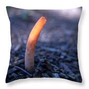 Stinkhorn Rising Throw Pillow