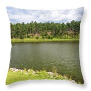 Stockade Lake In Custer State Park Throw Pillow