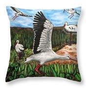 Stoks2 Throw Pillow