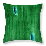 Stomata In A Green Onion Leaf, Esem Throw Pillow