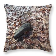 Stone And Leaves Throw Pillow