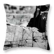 Stone Architecture Throw Pillow