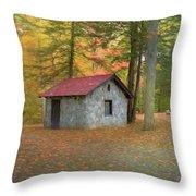 Stone Building In Autumn Throw Pillow