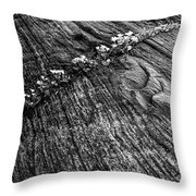 Stone Fissure Throw Pillow