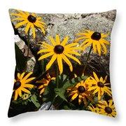 Stone Flowers Black Eyed Susan Throw Pillow