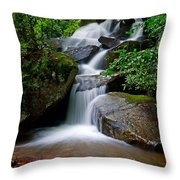 Stone Mountain Falls Throw Pillow