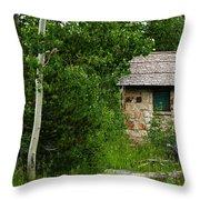 Stone Outhouse 2 Throw Pillow