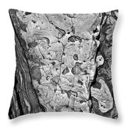 Stone Patterns Rock Map Throw Pillow by Garry Gay