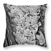 Stone Patterns Rock Map Throw Pillow