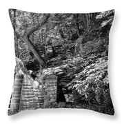 Stone Stairway Along The Wissahickon Creek In Black And White Throw Pillow