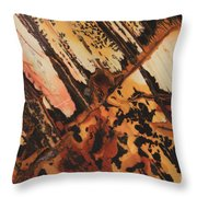 Stone Vision I-b Throw Pillow
