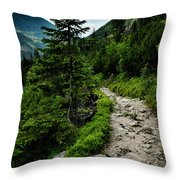 Stone Walkway Into The Valley Throw Pillow
