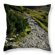 Stone Walkway Towards The Pointed Peak Throw Pillow