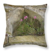 Stone Wall Determination Throw Pillow