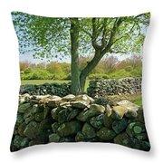 Stone Wall In Rhode Island Throw Pillow