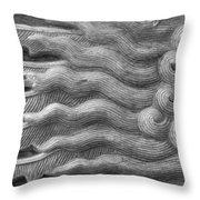 Stone Work Throw Pillow