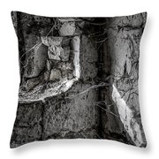 Stoned Throw Pillow
