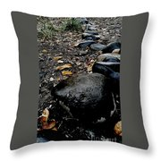 Stoned Trail Throw Pillow