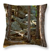 Stones And Trees Throw Pillow