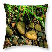 Stones Beside The Stream Throw Pillow