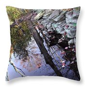 Stonewall Reflections Throw Pillow