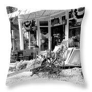 Stoney Creek Texas Throw Pillow