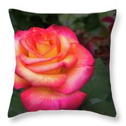 Stop And Smell Throw Pillow