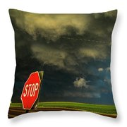 Stop And Take In This Moment Throw Pillow