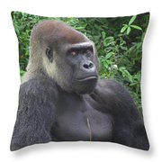 Stop Looking At Me Throw Pillow