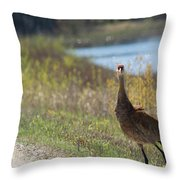 Stopped Throw Pillow