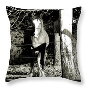 Stopping For A Pose - Southern Indiana Throw Pillow