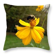 Stopping For A Sip Throw Pillow