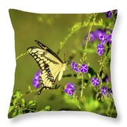 Stopping In For Dinner Throw Pillow