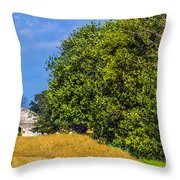Storage House Throw Pillow