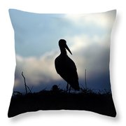 Stork In Evening Light Throw Pillow