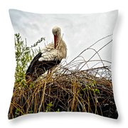 Stork Nest Throw Pillow