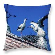 Storks Of Segovia Throw Pillow