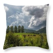 Storm And Cattle Throw Pillow