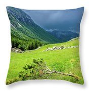 Storm Approaching Over Beautiful Green Field In Norway Throw Pillow