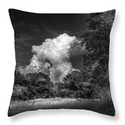 Storm Beyond The Meadow Throw Pillow
