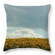 Storm Cloud Above Our Heads Throw Pillow